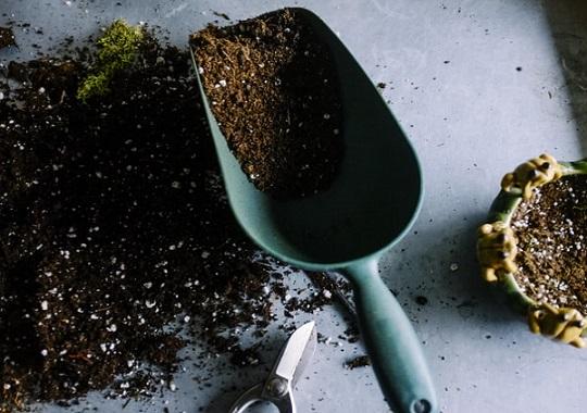 potting mix for indoor vegetable gardening