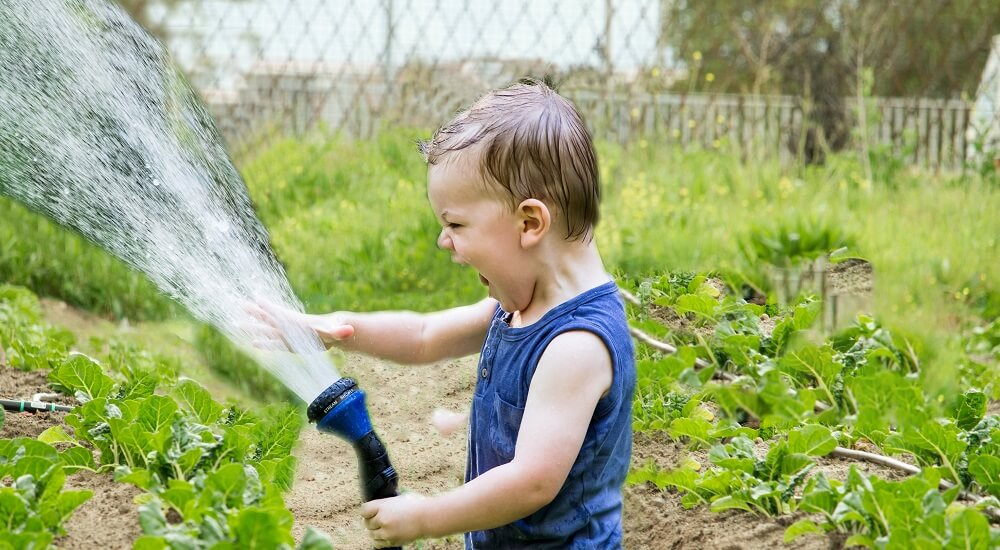best watering system for a vegetable garden