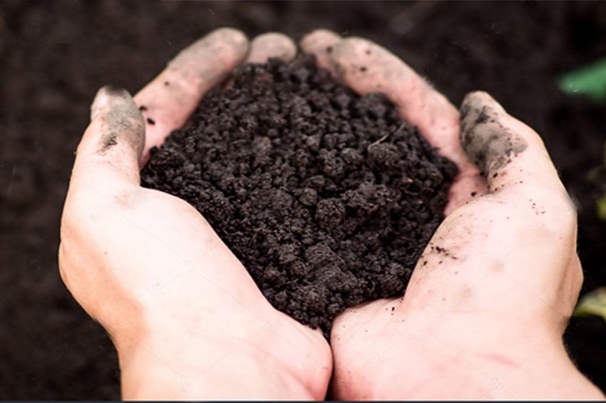 How To Prepare Soil For Vegetable Gardening Classygardening